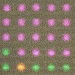Philips Partners on LED Carpet
