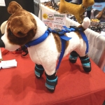 Canine Care Products' Snuggly Boots and Suspenders