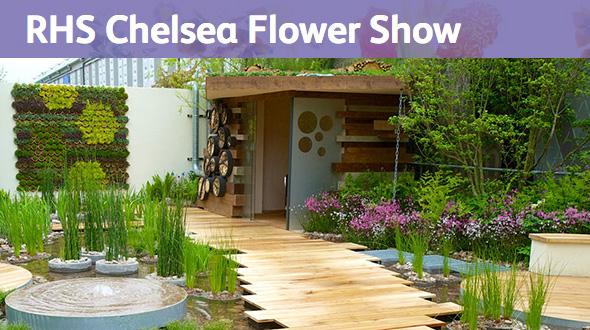 Chelsea Flower Show 2013