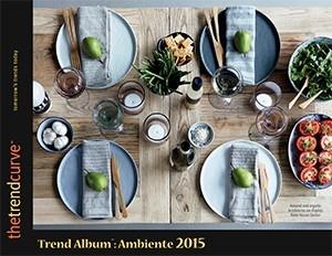 TA_Ambiente_2015-300-300x232